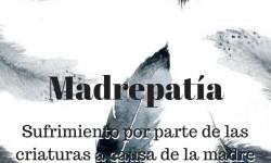07_madrepatc3ada